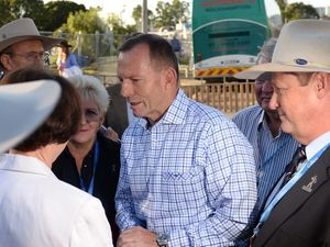 Tony Abbott mooo-ved by Beef