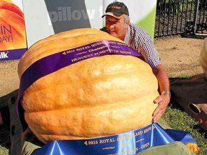 Geoff's giant pumpkin weighs how much?