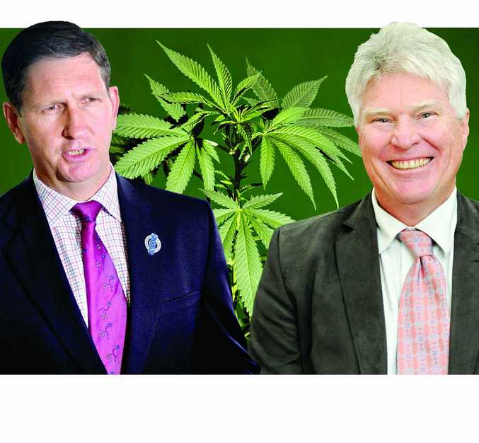 CAUTIOUS: Southern Downs MP Lawrence Springborg and GP Dr Ross Hetherington support plans for medicinal marijuana trials.