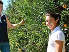 """FRUIT PICKING: Italian backpacker Serena Fantini, 24 (right), says it's been a great season and working for Megan Roth (left) is """"a lot of fun""""."""