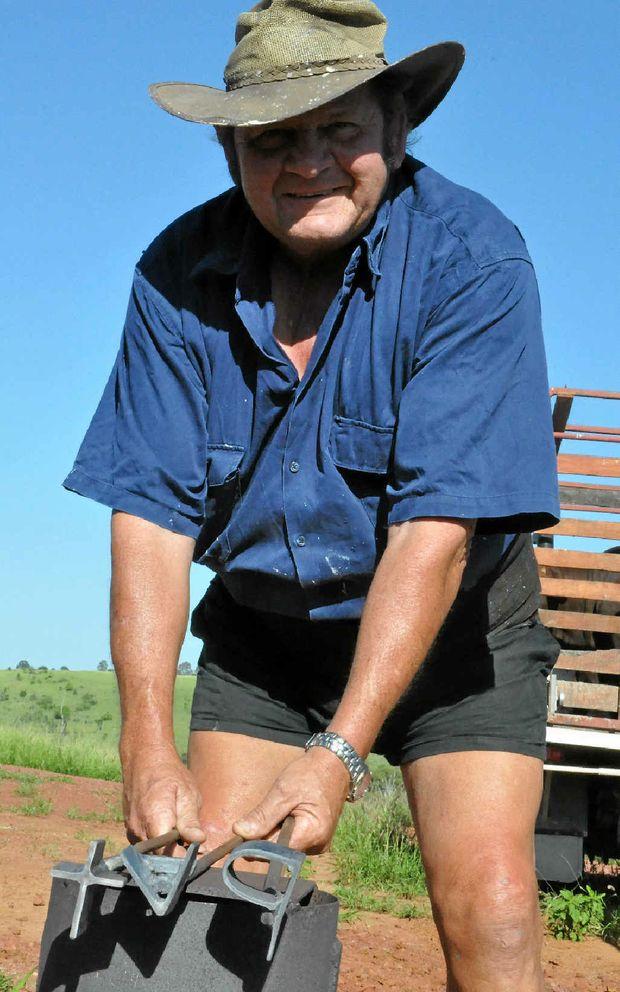 MAKING A MARK: Paul Lobegeier branding bulls on his Kapaldo property.