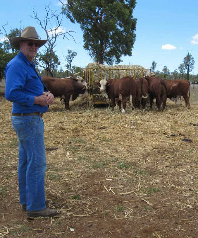 DRY SPELL: Gogango grazier Larry Acton is hoping the El Nino event does not result in another year of drought for the farmers and graziers out west.