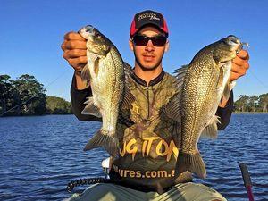 FISHING: Sunshine Coast dams brimming with big fat fish