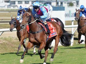 Morris brings gelding home