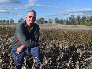 Are dryland farmers being left behind by the Federal Budget?