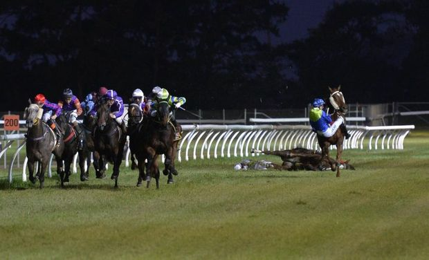 Apprentice Rebecca Williams lays motionless while Brooke Stower is about to crash to the turf during a chain-reaction fall in race two at Clifford Park tonight.