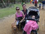 Selina, Grant and Annabelle Woodholme with Bear and Willis at the RSPCA Million Paws Walk. Photo Michelle Gately / Morning Bulletin
