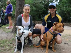 Gladstone Million Paws Walk