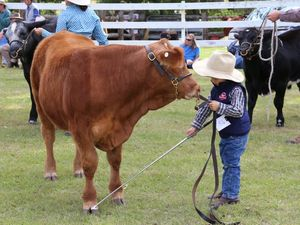 Blackbutt Show 2015