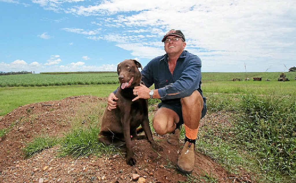 NO SURPRISE: Bidwill cane farmer Allen Birt said he wasn't surprised drought status had been revoked.