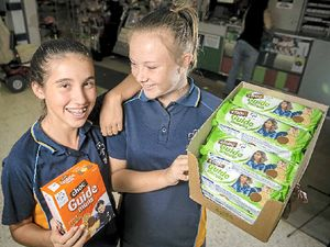 Girl Guides back in vogue as population grows