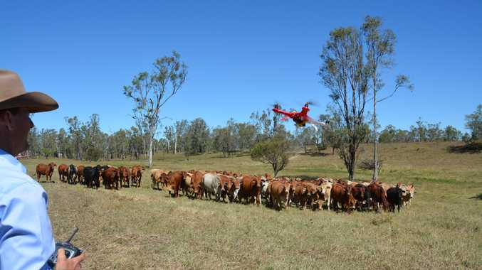 Minister for Roads, Maritime and Freight Duncan Gay encouraged regional councils to participate in the NSW Livestock Loading Scheme.