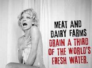 Pamela Anderson strips off for PETA
