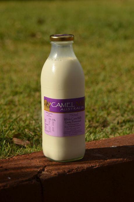 Coolabunia farmer Deb Corbett has started selling camel milk.