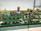 QUIRKY AND CUTE: Schoolchildren from Torbanlea State School decorated fruit and vegetables, which went on display at the Fraser Coast Show.