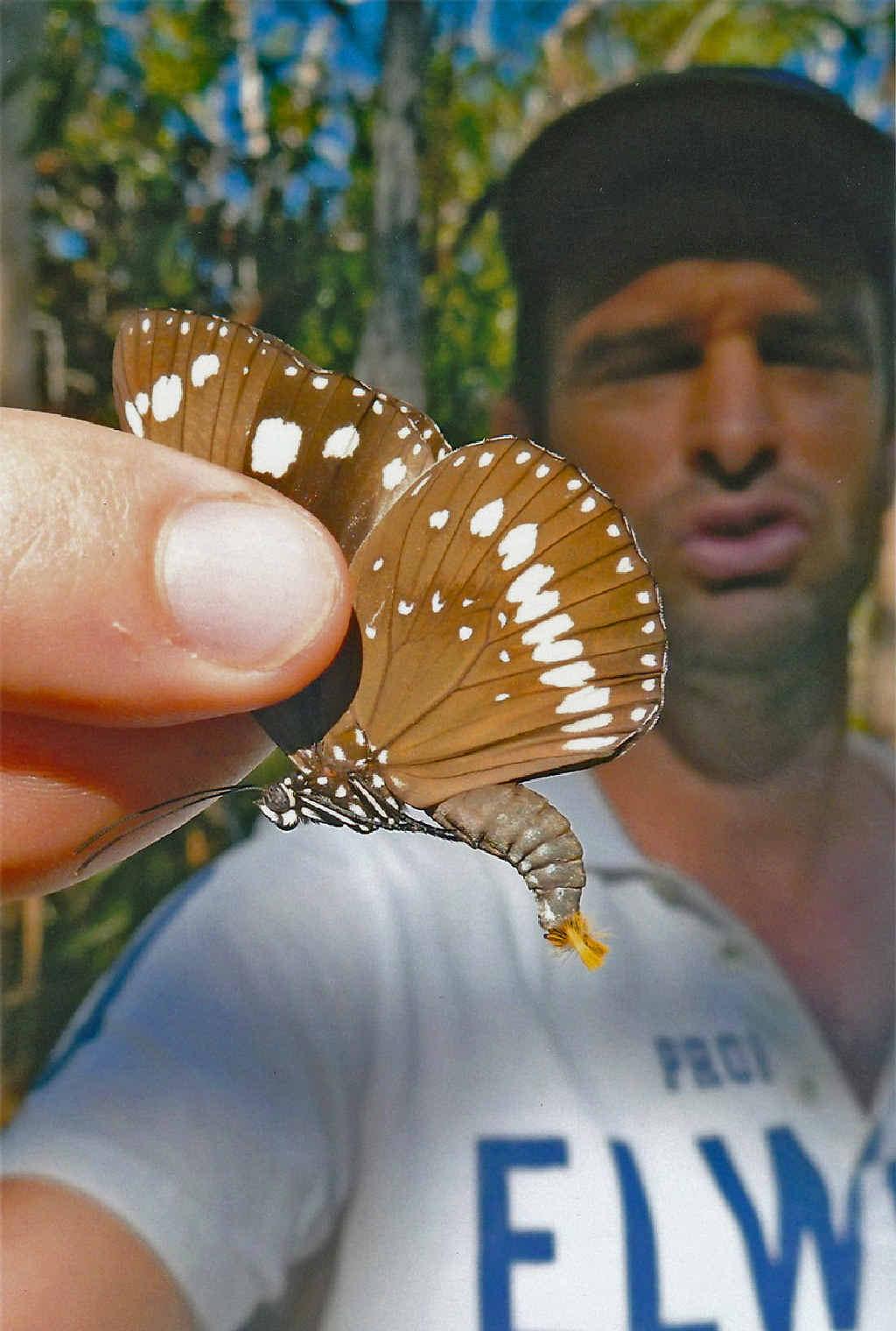 UP CLOSE: David St Henry holds a butterfly.