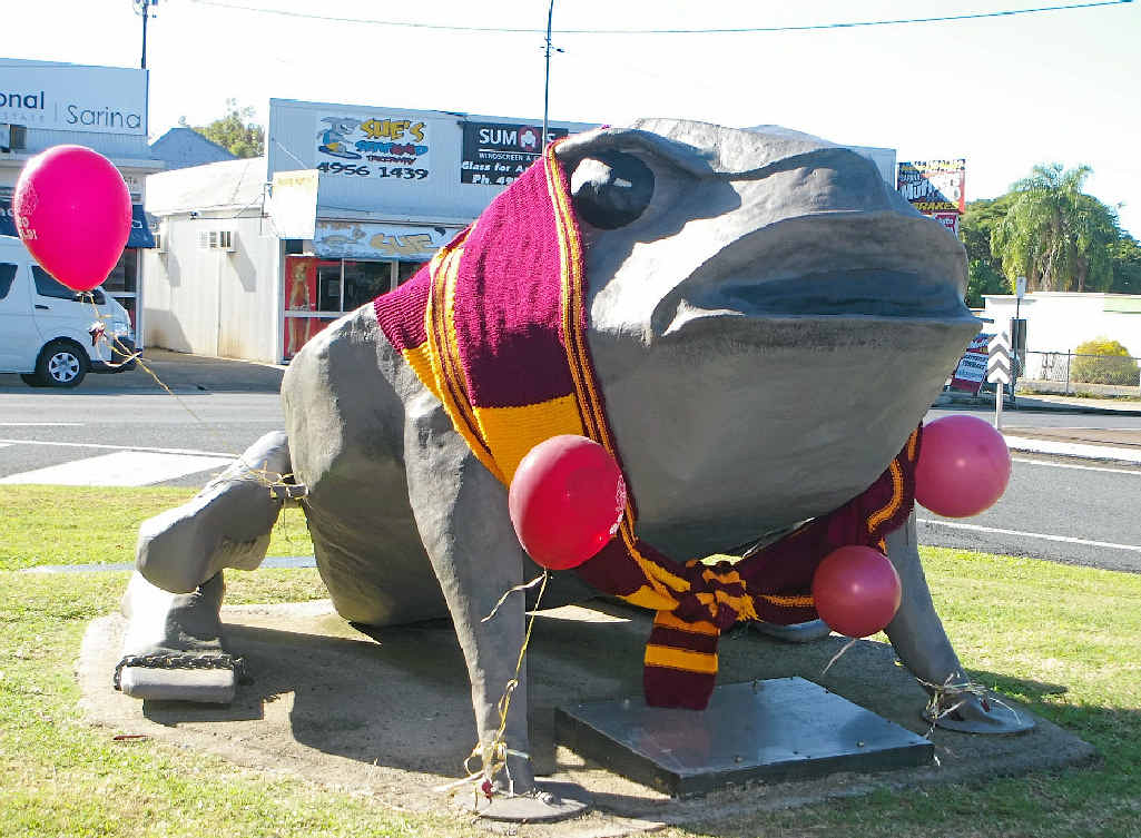 QUEENSLANDER: Sarina's icon Buffy is dressed for tonight's Origin game one.
