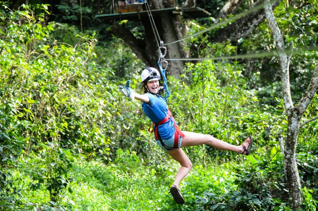 The Obi Obi National Park zipline will mimic similar Australian projects such as the Hollybank Treetops Adventure Tour in Tasmania, where riders can cruise through the trees.