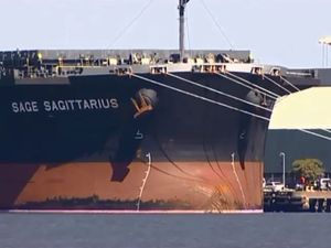 Sage Sagittarius to steer inquiry into foreign shipping