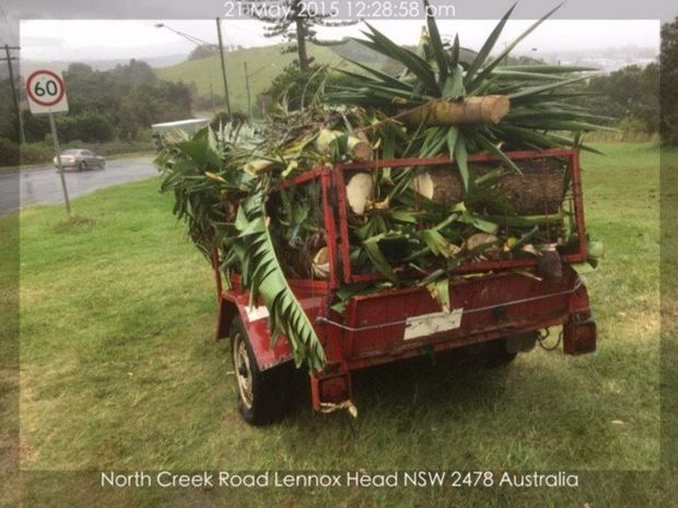 This trailer containing 300kg of green waste was dumped on North Creek Road Lennox Head. Photo Contributed