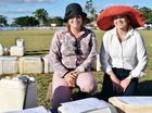 INNOVATIVE: Young Farmers Challenge organisers Zoe Rickertt and Ria Garside at the steer drenching station.