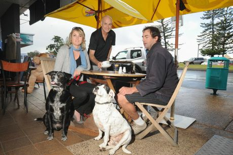 Customers love to bring their dogs to the Attic Cafe at Alexandra Headland.