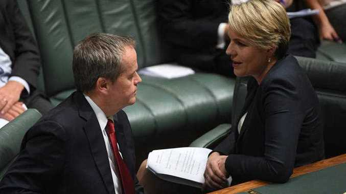 Federal Labor opposition leader Bill Shorten and deputy opposition leader Tanya Plibersek speak during Question Time.