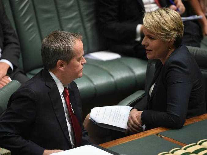 Federal Labor opposition leader Bill Shorten and deputy opposition leader Tanya Plibersek speak during Question Time.
