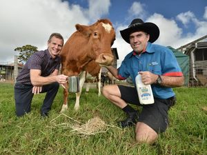 YOUR SAY: Buy local and support our dairy farmers