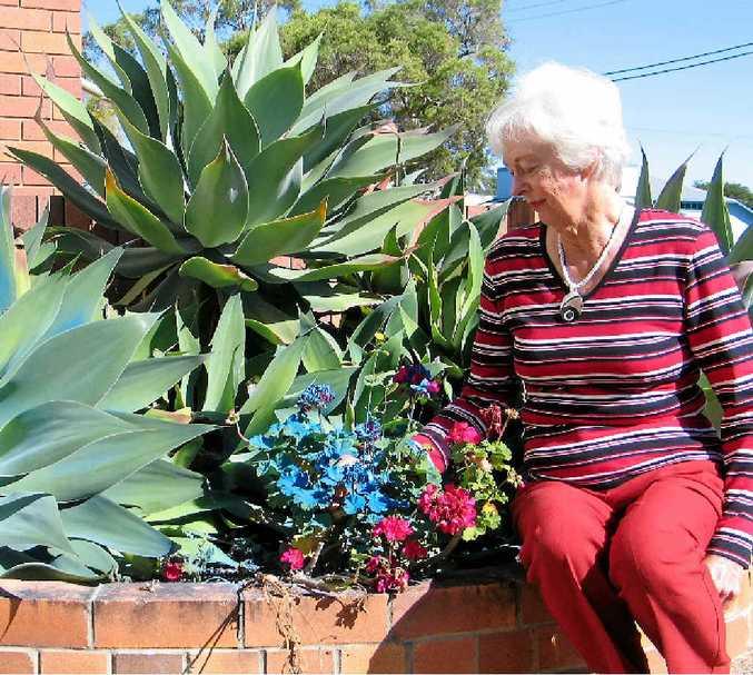 PLANTS TURN BLUE: St Peter's Church parishioner Bev Geissler is thankful only the plants were sprayed blue during a vandalism spree in Biggenden on Saturday night.