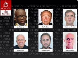 Interpol issues wanted alerts for ex-officials, executives