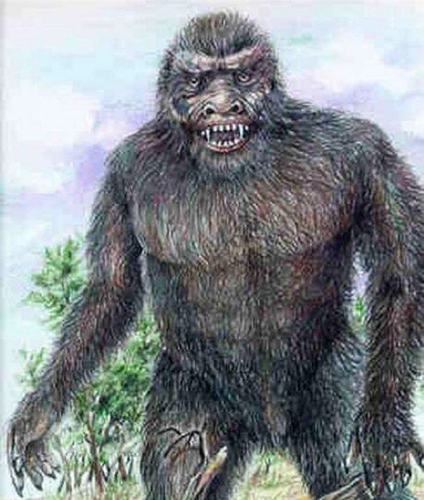 Mulgowie Yowie. Photo: Contributed