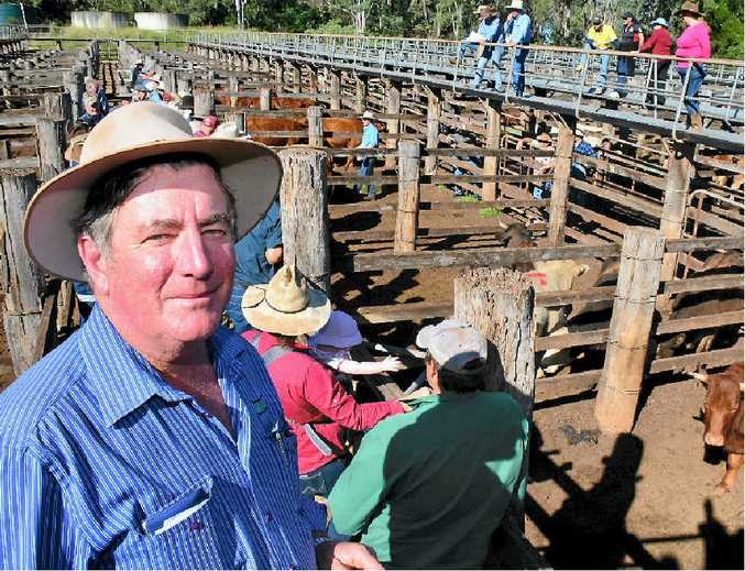 COOLABUNIA SALEYARD: Livestock agent Bill Steffensen says weather is the biggest hurdle for cattle farmers in the colder months.