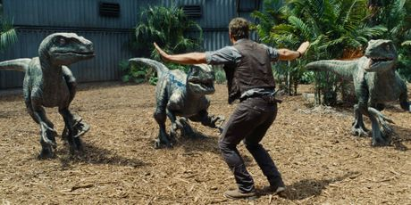 Chris Pratt in a scene from the movie Jurassic World.