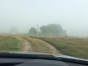 YOUR PHOTOS: Gladstone's foggy mornings