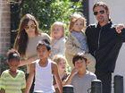 Brad Pitt and Angelina Jolie travel in economy class