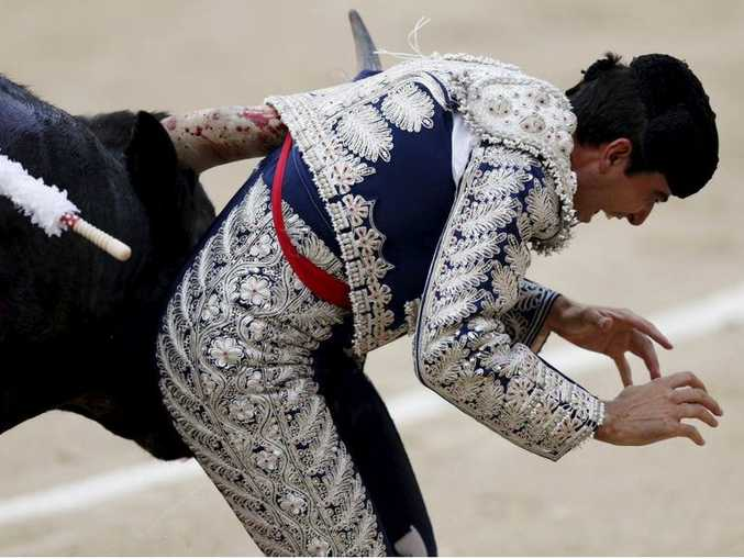 The bull gored Marco Galan in the groin and dragged him along by his jacket