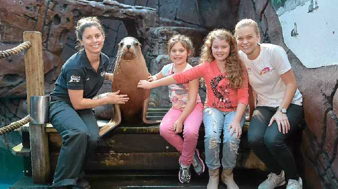 SEAL STARS: Juiced TV, a kids' TV show run by sick kids for sick kids, film a segment at Sea Life Mooloolaba. Pictured are trainer, Jess Heading, Teiko the seal, Lara Everingham, Chloe Solomon and Pip Russell from Juiced TV.