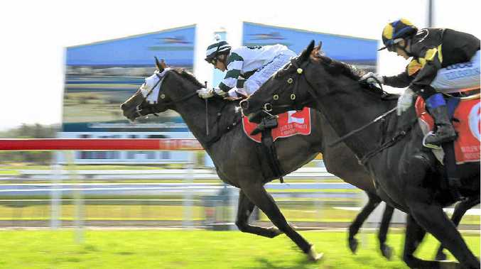 BIG EARNER: Cheapskater, with Brad Pengelly aboard, hits the winning post in the Kawana Chamber of Commerce 1200m sprint at Corbould Park yesterday.