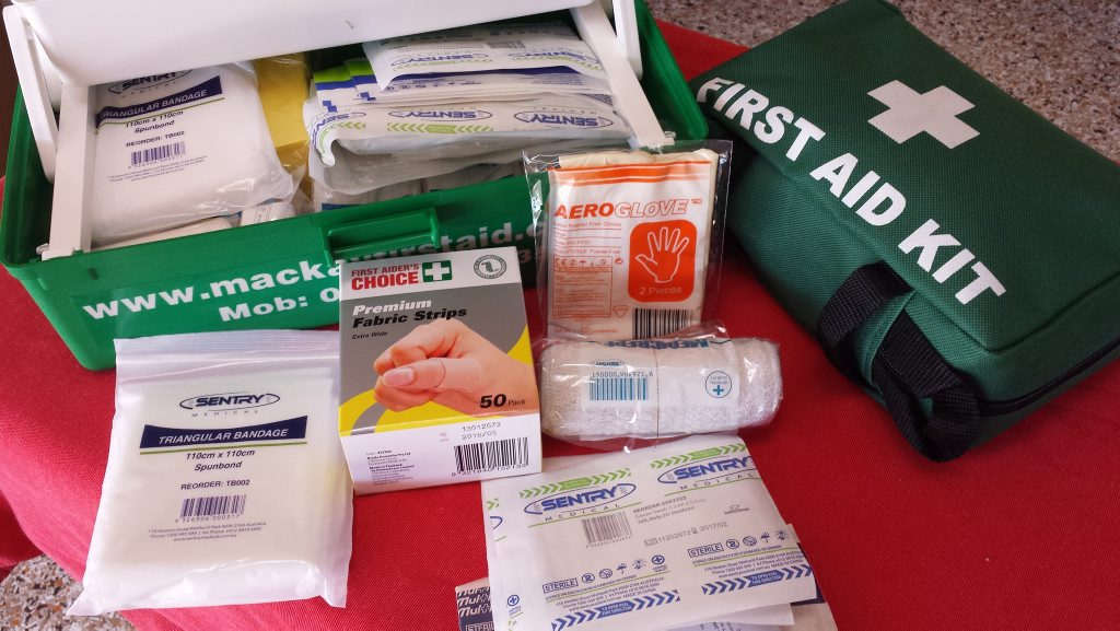 SOME ESSENTIALS: First aid kit supplies Photo Lynnis Bonanno / Daily Mercury