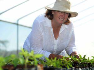 BlazeAid gets vegtable farm back in business after Marcia