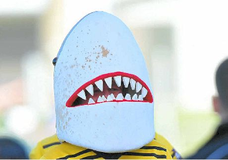 WINNERS ARE GRINNERS: Sharkman is impressed by his side's form reversal.