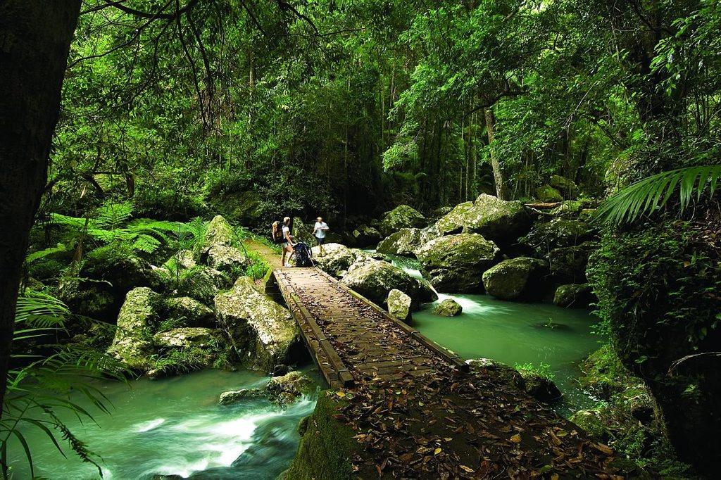 Kondalilla Falls are the perfect way to get back to nature.  Photo: Sunshine Coast Destination Limited.