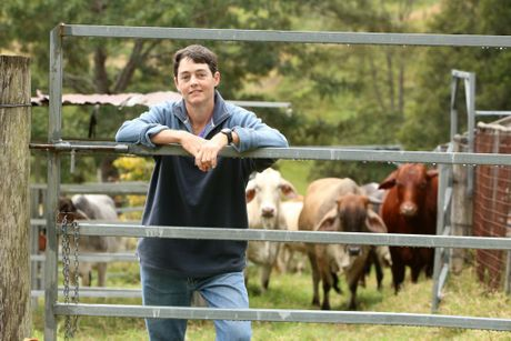 Kenilworth farmer and nurse Adele Pitt is struggling to find work as an Occupational Therapist despite winning the Deans prize for nursing at USQ. Photo: Nicola Brander / Sunshine Coast Daily
