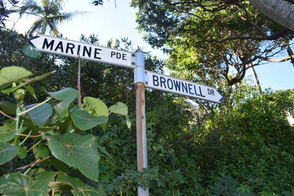 HIPSTER SQUATTERS: Brownell Drive at Watego Beach.