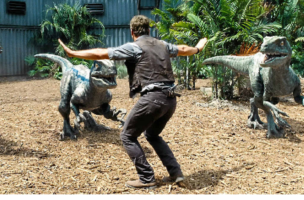 DINO-MITE: Chris Pratt's character Owen has developed a bond with the fierce.