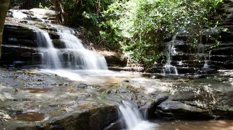 Nothing beats the waterfall treat at the end of a walk through Buderim Forest.