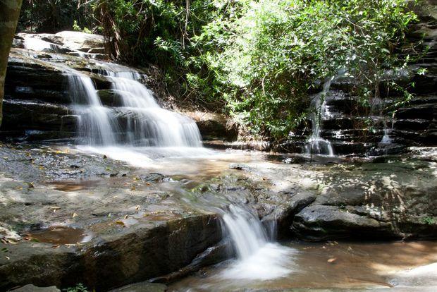 The beautiful waterfalls of Buderim.