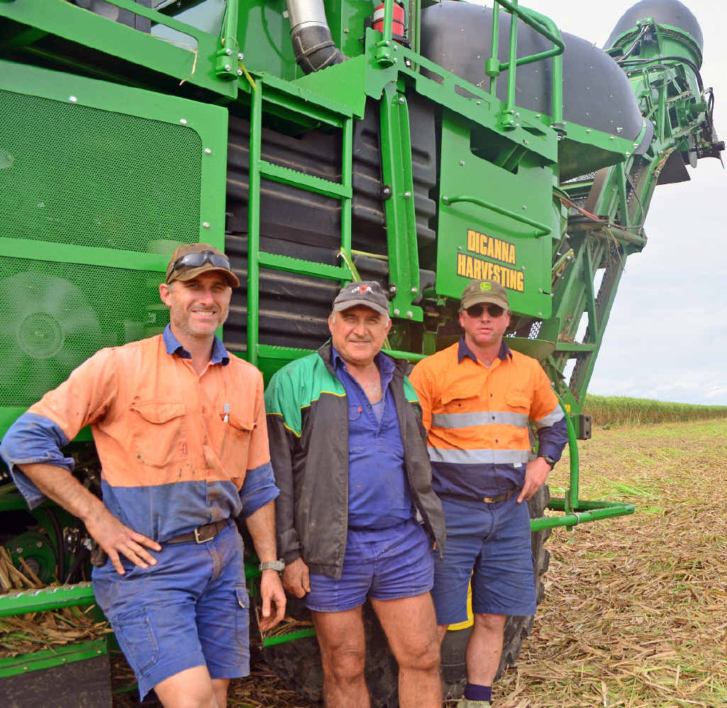 HARD YAKKA: Canegrowers Michael Russo, Joe Russo and Roderick Jensen are excited about this year's crushing season.