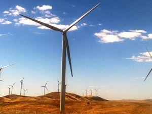 Gladstone named as top spot for coastline wind farm